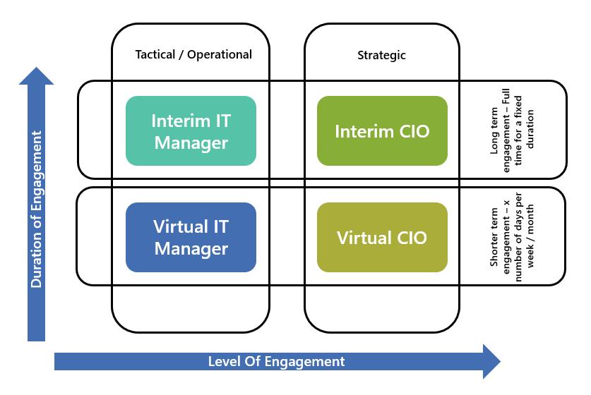 Interim virtual CIO